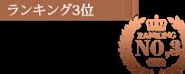 柏デリヘル 風俗|人妻デリバリーヘルス『秘密倶楽部 凛 柏店』10月度<1st月間総合>ランキング【ランキング3位】