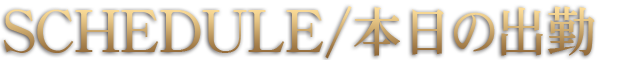 柏デリヘル 風俗|人妻デリバリーヘルス『秘密倶楽部 凛 柏店』【FIRST STAGE】出勤情報