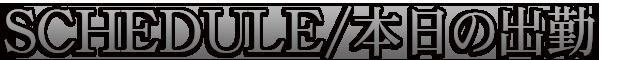 柏デリヘル 風俗|人妻デリバリーヘルス『秘密倶楽部 凛 柏店』【SECOND STAGE】出勤情報